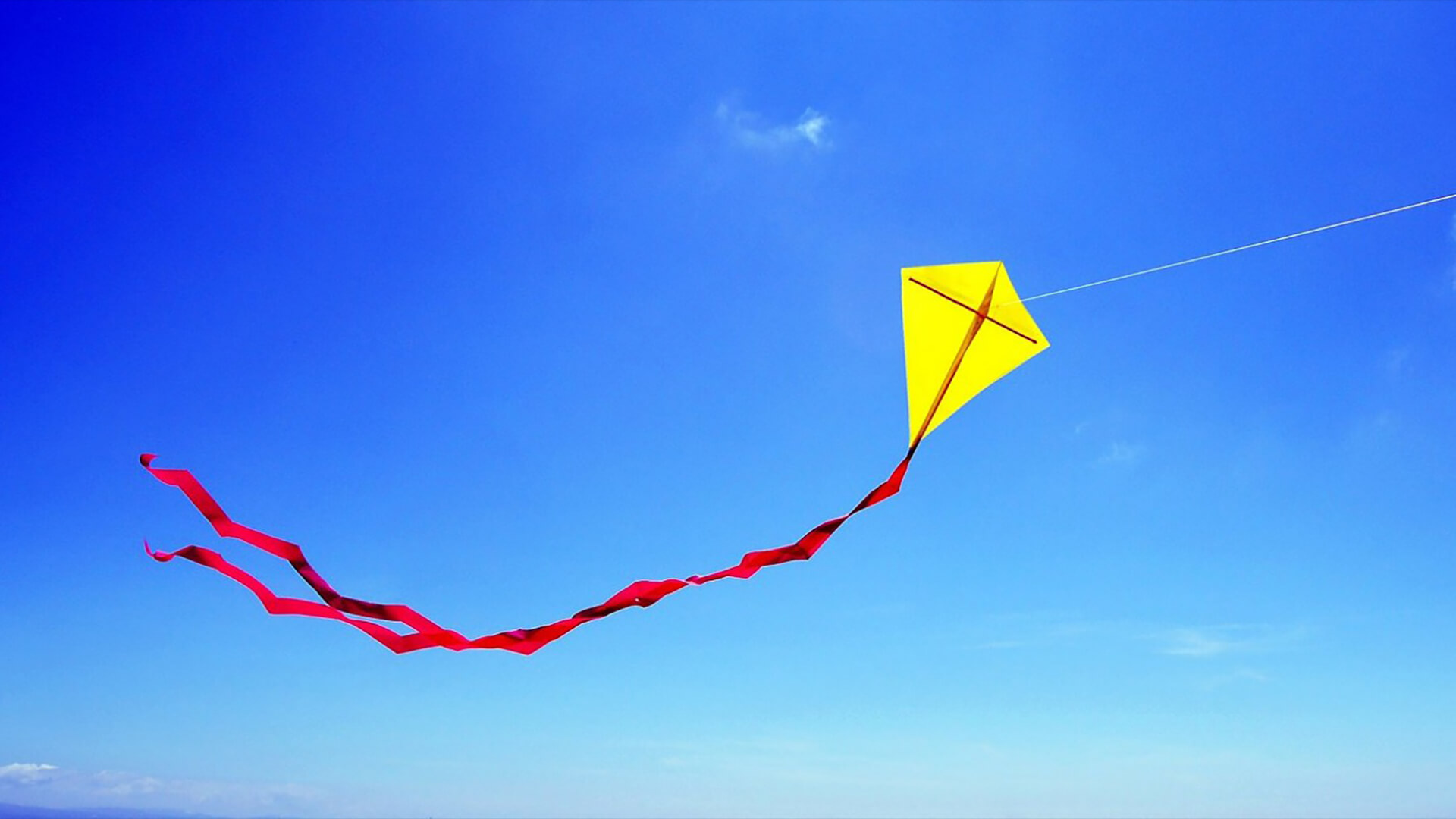 Lube N Go >> Let's Go Fly a Kite! at Steele Creek Park | Downtown ...